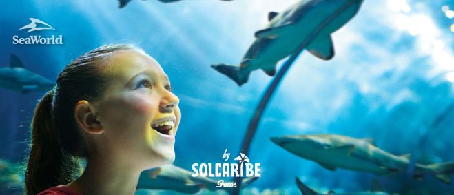 Orlando con Seaworld 02