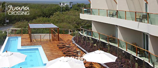 Hotel Iguana Crossing
