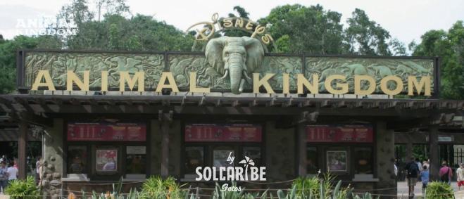 Miami Orlando Disney 07
